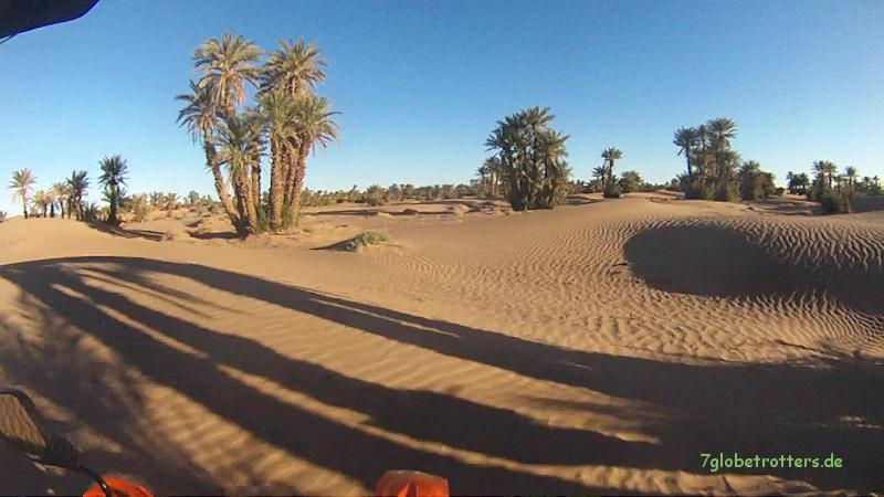 130205 KTM Marokko Draa-Mhamid (10) 26