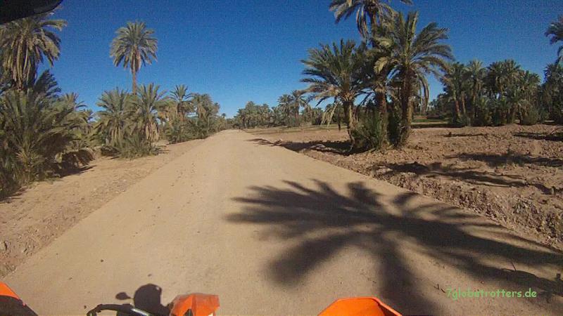 130205 KTM Marokko Draa-Mhamid (7) 15