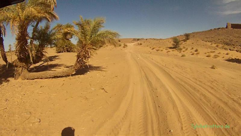 Weichsandfeld auf der Wüstenpiste von Mhamid zur Auberge Dinosaur in der KemKem, Marokko