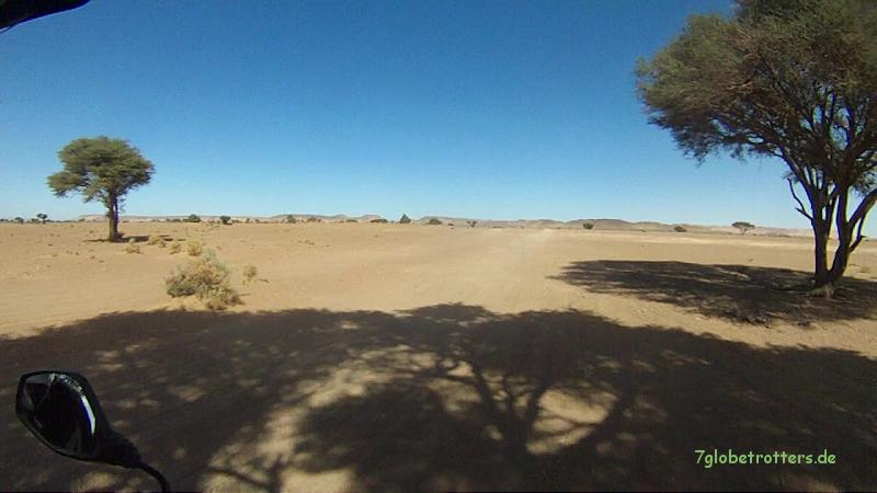 Wüstenpiste von Mhamid zur Auberge Dinosaur in der KemKem, Marokko