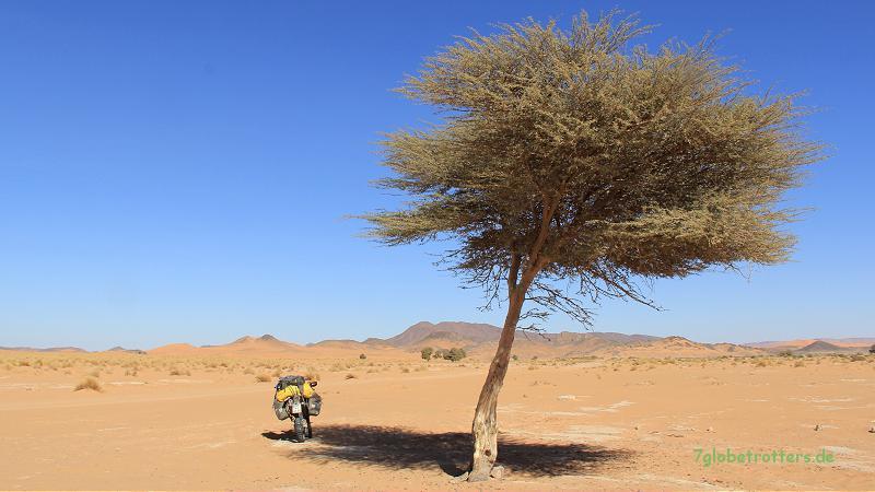 Einsame Wüstenpiste östlich von Ramlia