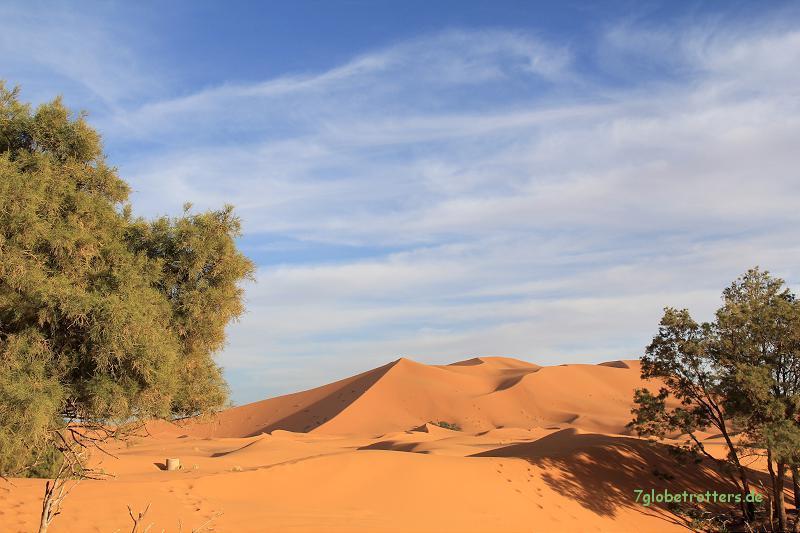 Der große Sandkasten von Merzouga / Erg Chebbi