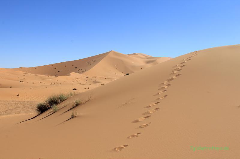 130209 KTM Marokko (7)