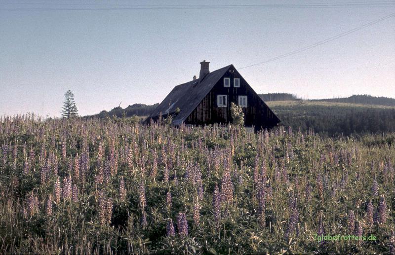 1988-Osteuropa-188-misthaus