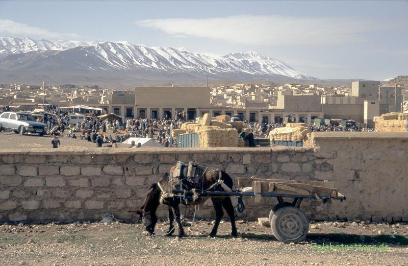 1996 Marokko (253)
