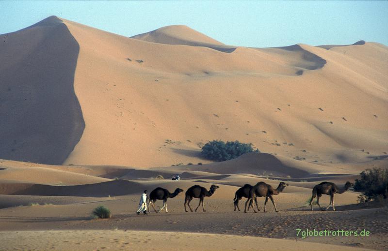 Grand Dune de Merzouga, Erg Chebbi, Marokko