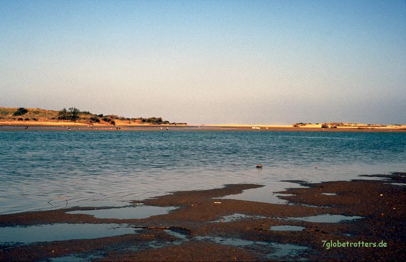Marokko 1996: Vogelparadies von Sidi R'bat