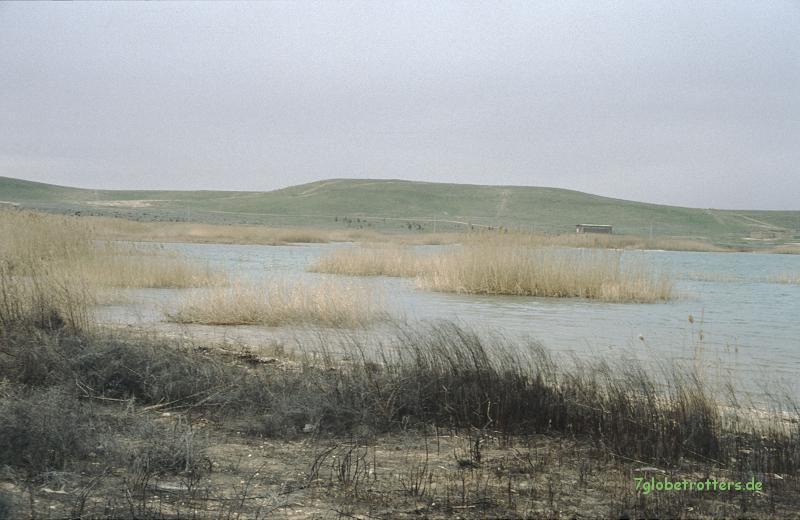 1997 Zum Roten Meer (107)