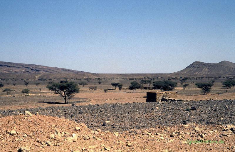 Im Prinzip fruchtbares Land am Rand der Wüste
