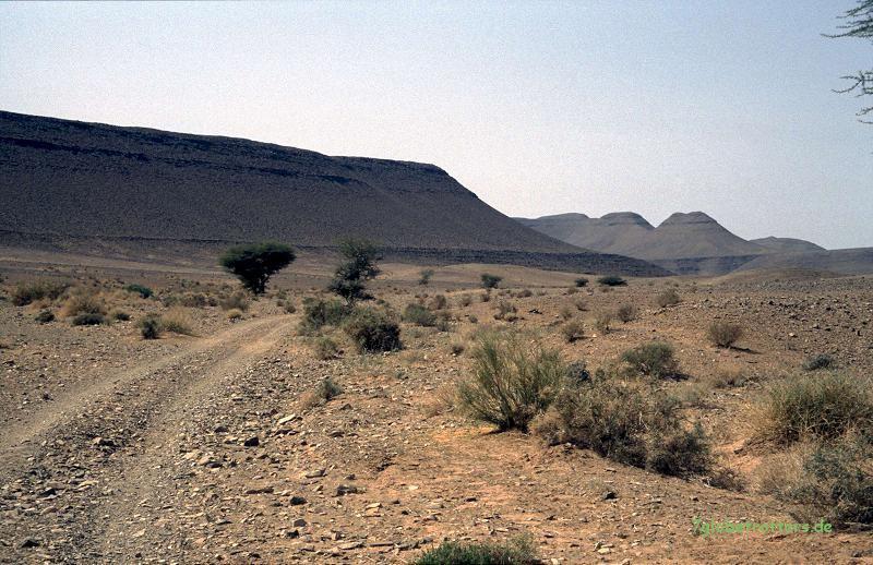 Gebirgspiste von Zagora nach Bleida - mit dem MB 508 D
