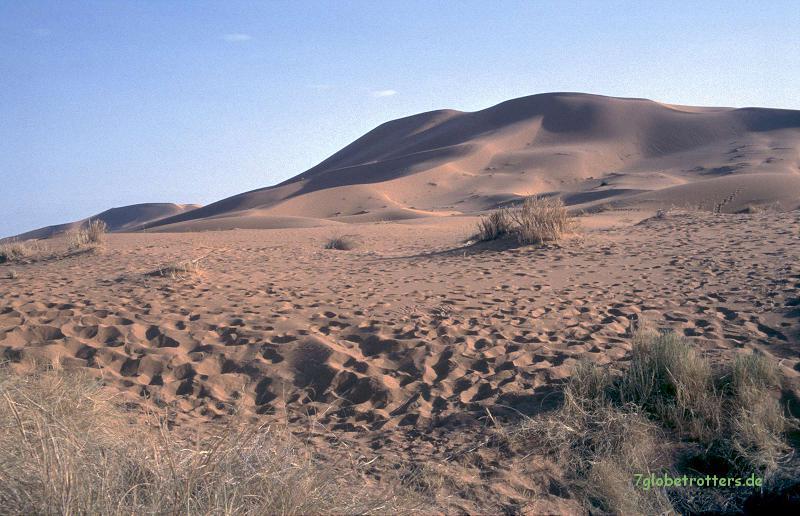 Nur ein paar Kamelspuren im Sand...
