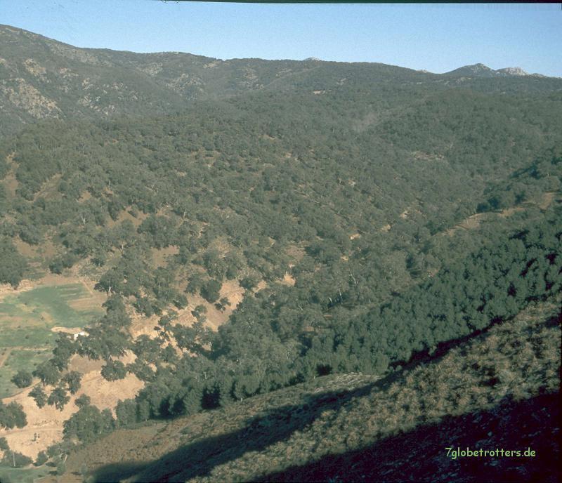 Tazzekka Nationalpark
