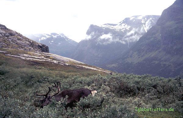 2000-08-15-geirangerfjord-norwegen-120