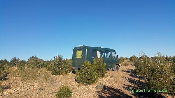 Mit dem Kastenwagen Marokko: MB 711 D in einer Zedernschonung bei Midelt