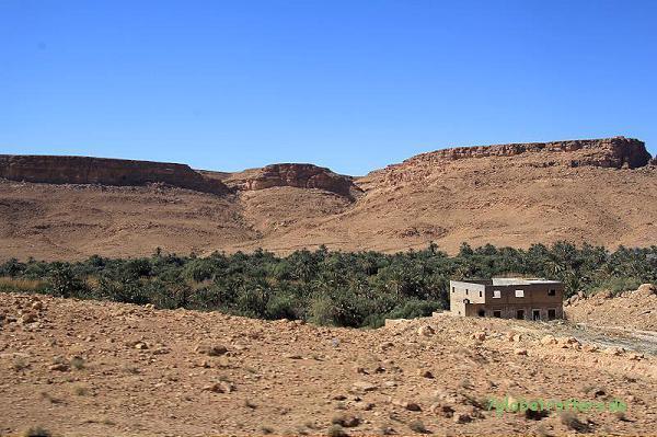 Eine Oase zieht sich durch die Steinwüste: Im Tafilalt, Marokko