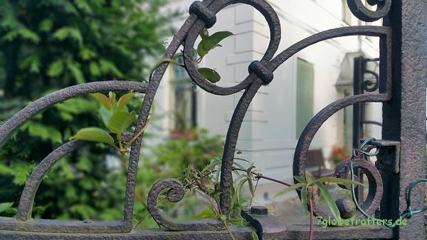 Weltreise daheim: Der Orient am Gartenzaun