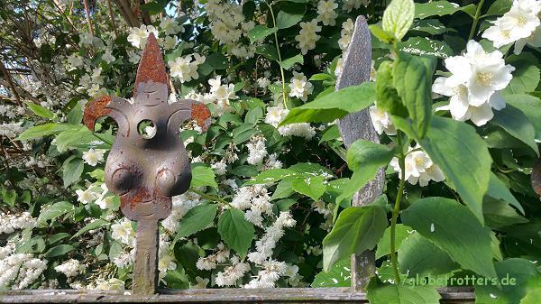 Weltreise daheim: Der Orient am Gartenzaun;