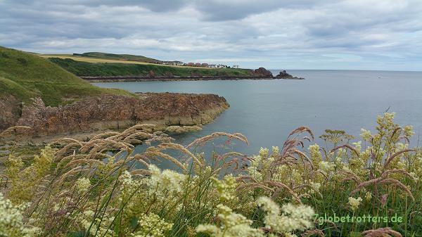 Küste bei Eyemouth / Schottland