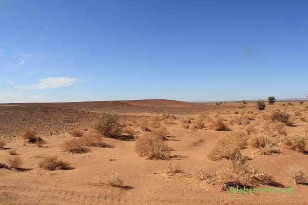Ein kleines Flusstal in der Wüste: Hier ist mit viel weichem Sand auf der Piste zu rechnen