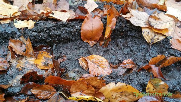 Unser ökologischer Fußabdruck