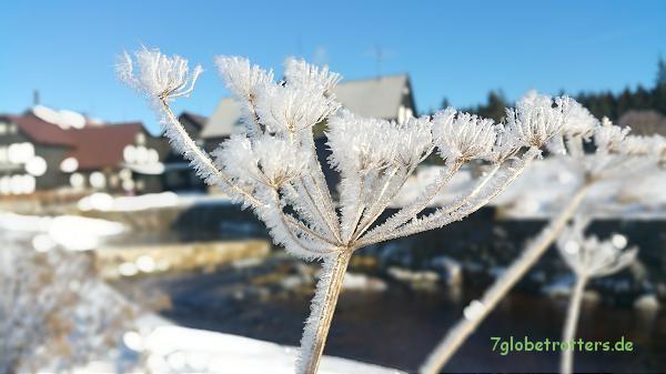 Ich mag Eis und Schnee: Zeit für ordentliche und größere Winterreifen auf dem Wohnmobil