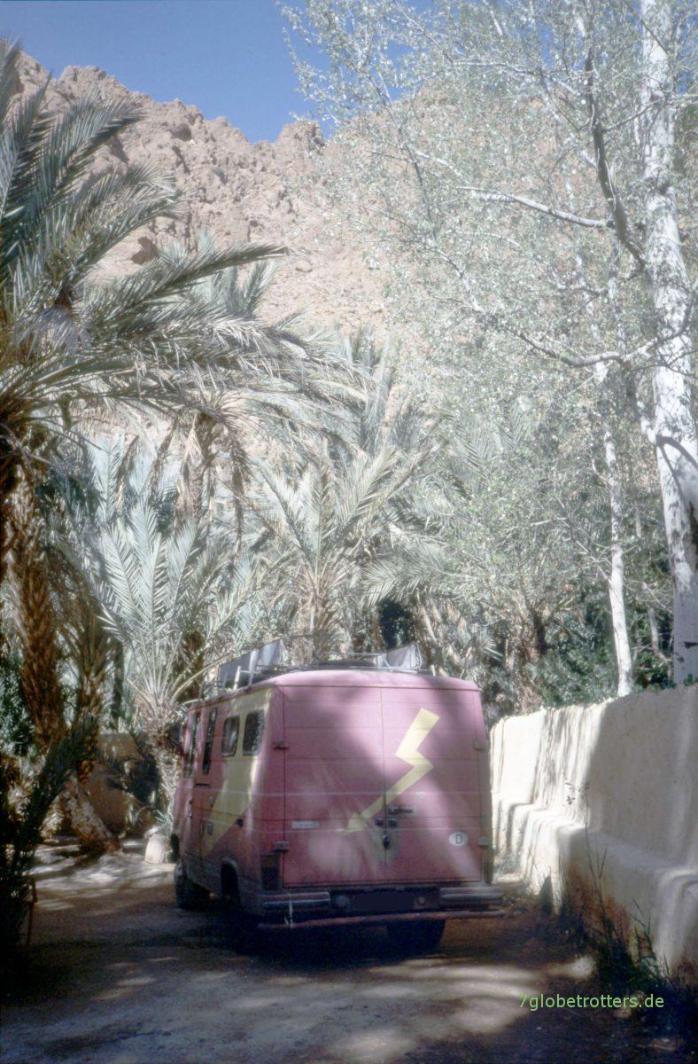 Schrauben unter Palmen: MB 407 D