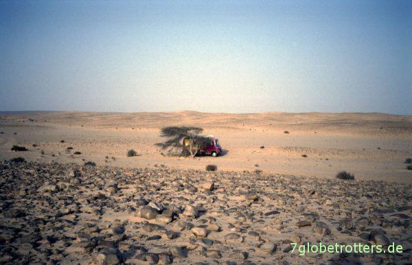 Wüstenstellplatz bei As Smara am einzigen Schattenspender weit und breit
