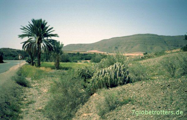 Grüne Hügel an der Küste von Sidi Ifni