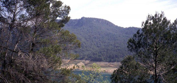 Stausee in der Sierra de Cazorla: Embalse del Tranco de Beas (Guadalquivir)