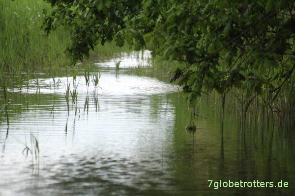 Erster Höhepunkt der 10-Seen-Paddeltour: Schwaanhavel