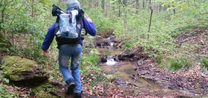 Auf Entdeckungstour am unteren Wasserpfad