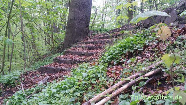 Die verwunschene Treppe zum unteren Wasserpfad