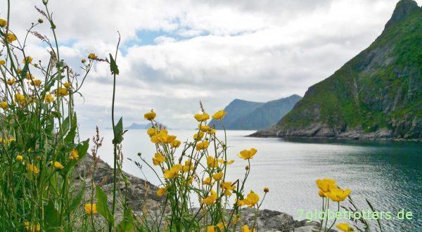 Die berühmte Lofotwand der Insel Moskenesøya, hinten links Mosken