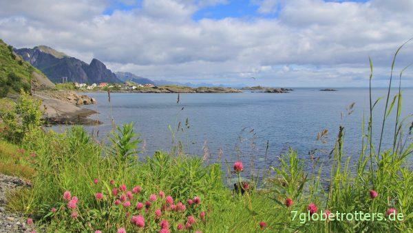 Wilde Küste der Lofoten