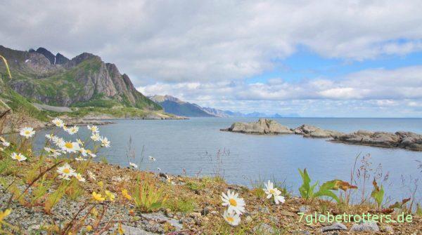 Ostküste der Lofoten