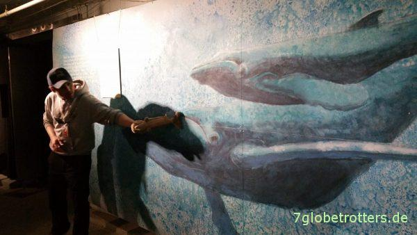 Führung im Walmuseum Andenes
