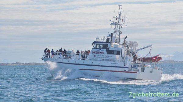 Kleine Wettfahrt mit dem Schwesterschiff zurück nach Andenes
