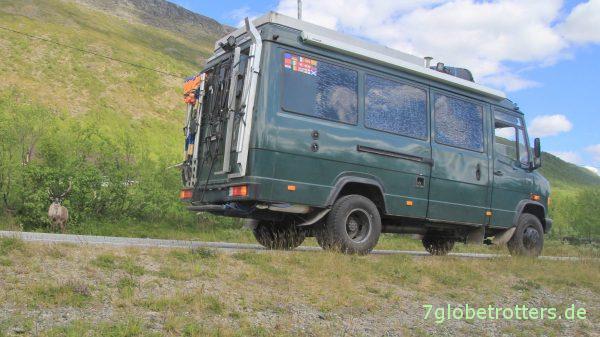 MB 711 mit neugierigem Rentier in Finnland