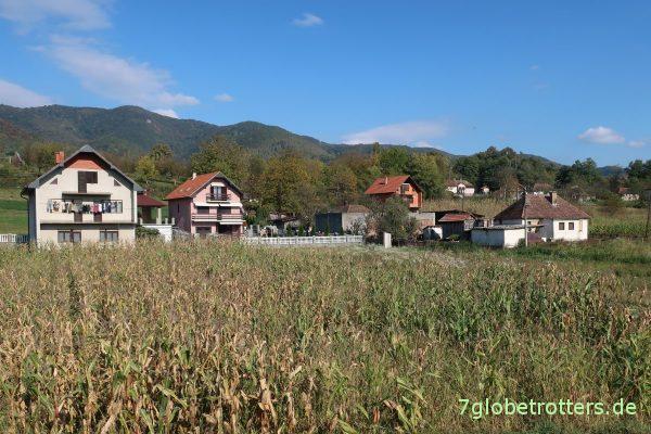 Serbien: Jeder hat ein Maisfeld vor dem Haus