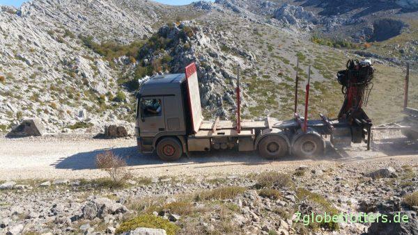 Ein MB 2855 Langholztransporter verfolgt mich