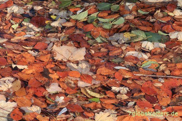 Herbstfarbenspektakel an den Plitvicer Seen