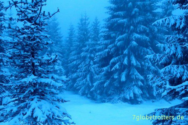 Blaue Stunde im Isergebirge