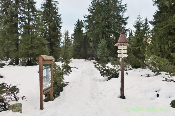 Jizerka 2018: Verschneiter Naturlehrpfad ins Hochmoor