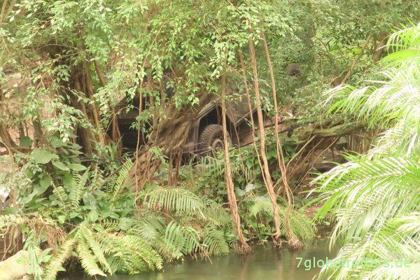 G-Klasse im Dschungel des Gondwanalands, Zoo Leipzig