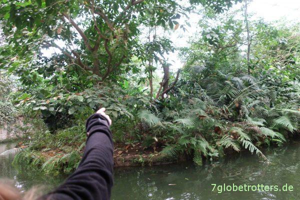 Dschungelbootsfahrt im Gondwanaland im Zoo Leipzig