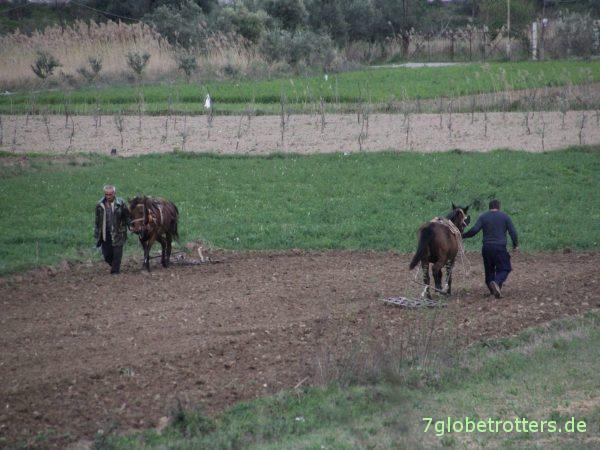 Transit von Griechenland durch Mazedonien und Albanien