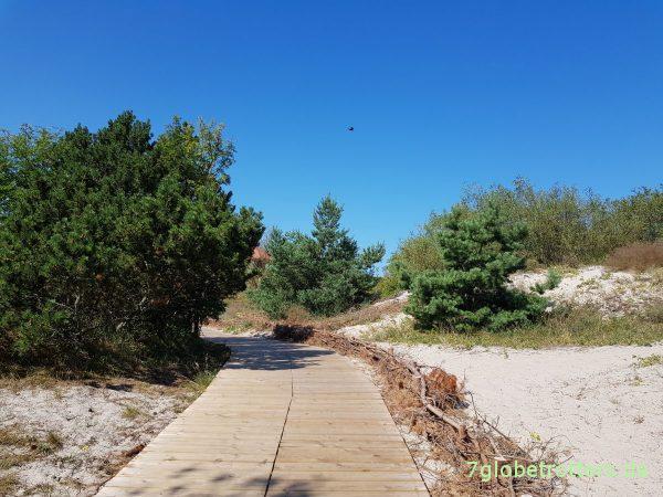 Urlaub auf der Kurischen Nehrung: Kiefern, Dünen & Meer am Campingplatz Nida / Nidden