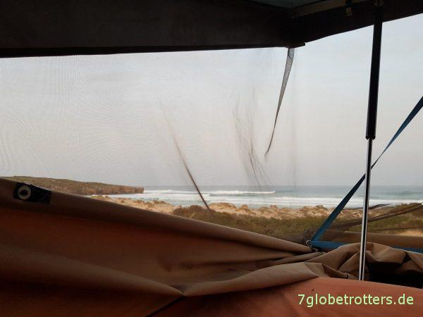 Fähre von Tróia nach Setúbal, Delfine in der Lagune von Sado, Halbinsel Comporta