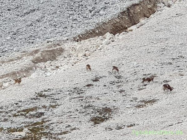 Helikoptereinsatz beim Dolomitenbiwak am Schlern, Tierser Alpl, Molignonpass, Grasleitenpasshütte