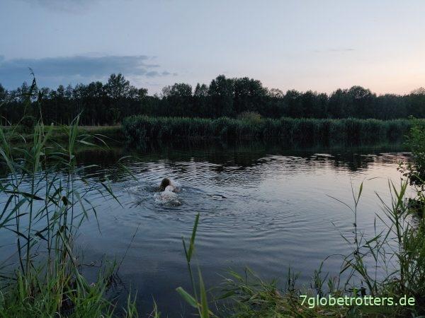 Paddeln auf der Neiße zwischen Wehr Bad Muskau und Groß Bademeusel